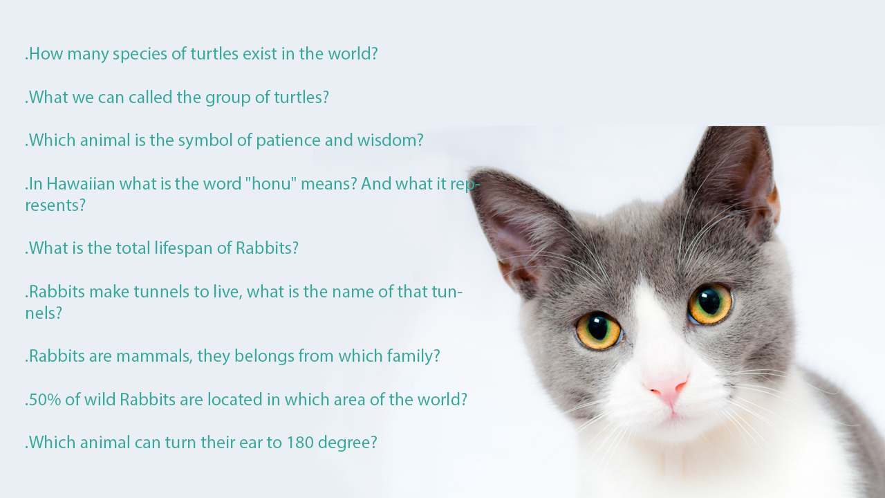 Hard trivia questions about animals