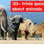 125+ best animal trivia questions