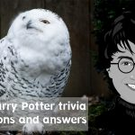 54+ Harry Potter trivia questions and answers
