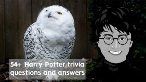 harry potter trivia questions and answers