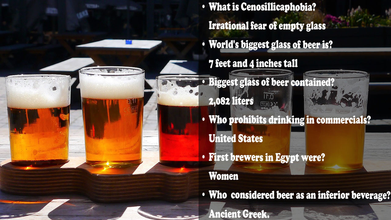 Beer Trivia Question